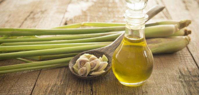 Znalezione obrazy dla zapytania olejek z trawy cytrynowej